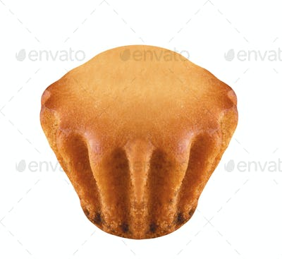 fresh muffin isolated on white background