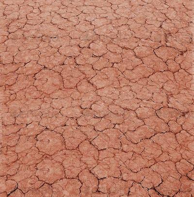 cracked clay ground