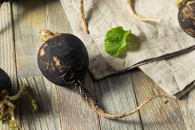 Organic Raw Black Radishes