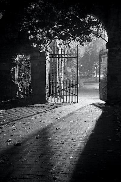 Park Entrance Gate At Night