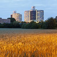 Hospital Building And Wheat Field, Germany