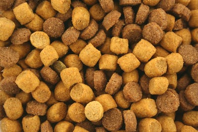 Dry Cat food background texture