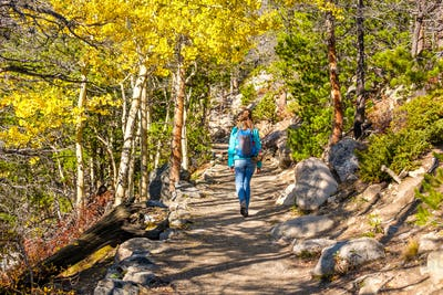 Tourist hiking in aspen grove at autumn