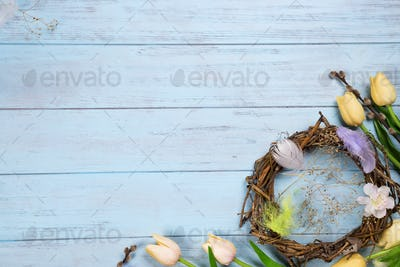 Easter nest and tulips on a wooden blue background