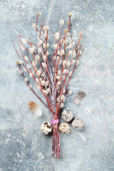 Quails eggs and pussy willow. Easter greeting card