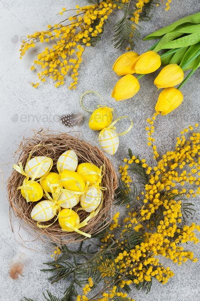 Quails eggs in nest and yellow flowers. Easter greeting card