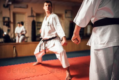 Martial arts, fight training in action