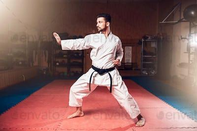 Martial arts master, black belt, karate