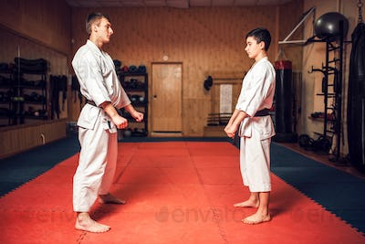 Martial arts master and young disciple