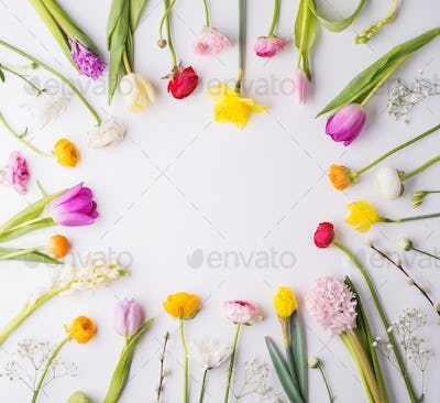 Flowers on a white background.