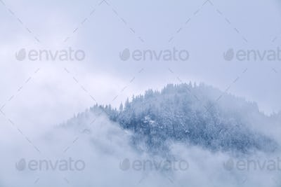 mountains top in winter fog