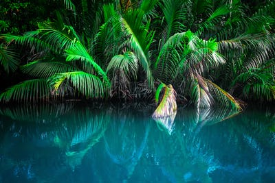 Fantasy landscape of tropical lake