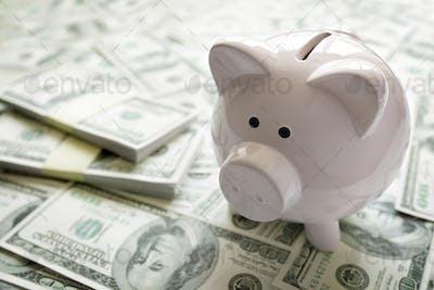 Piggy bank on money concept for business finance, investment and