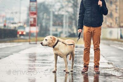Man with dog in rain