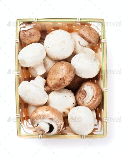 Champignon mushrooms