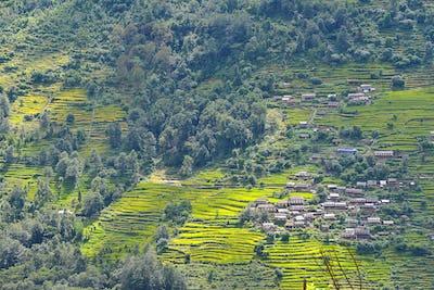 Terraced rice fields, paddy in Nepal. Organic farming