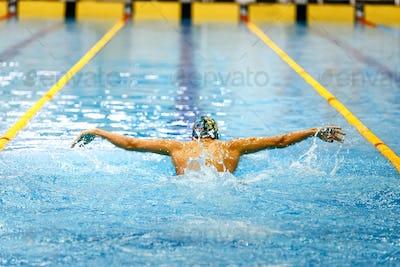 one swimmer athlete swim butterfly stroke