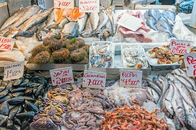 Fresh seafood and fish for sale at a market