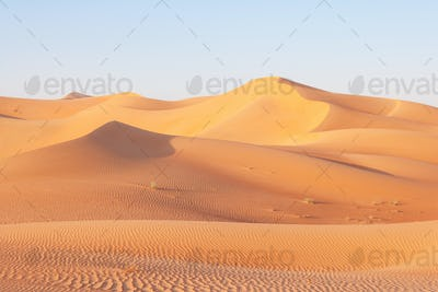 Dune Landscape in the Empty Quarter