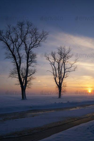 Snowy landscape in the Alblasserwaard