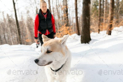Woman and dog walking in winter mountains