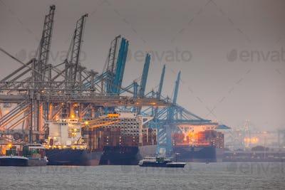 Rotterdam europoort industrial harbor landscape