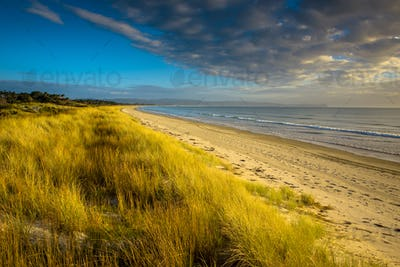 Uretiti Beach New Zealand