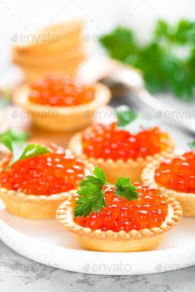 Tartlets with red salmon fish caviar, salmon caviar. Caviar