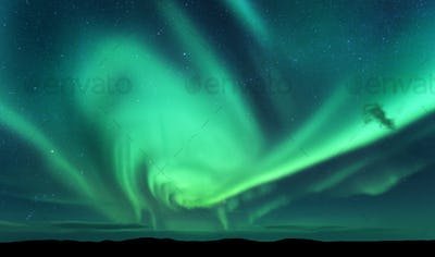 Aurora borealis and silhouette of hill. Lofoten islands, Norway.