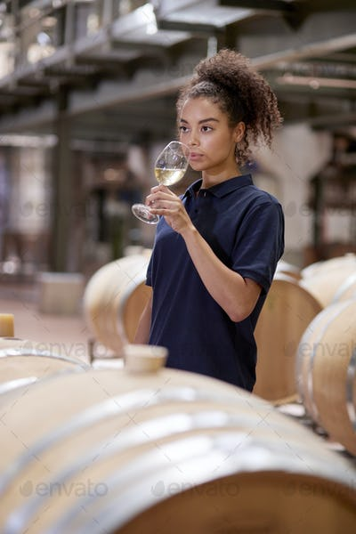 Young woman wine tasting in wine factory warehouse, vertical