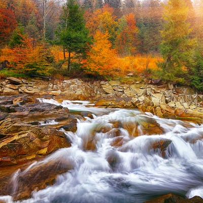 rapid mountain river in autumn
