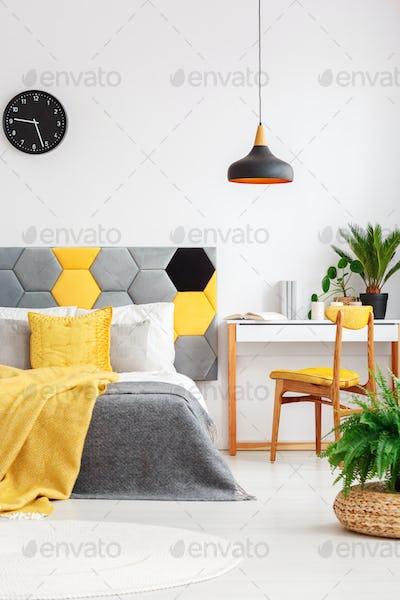 Plants in colorful bedroom interior