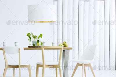 Wooden chairs in white interior