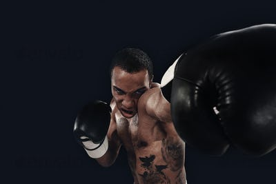 Boxing training and punching bag