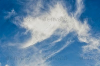 Clear blue sky with plain white cloud with space for text background