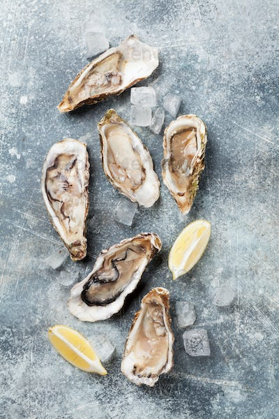 Fresh oysters on stone table