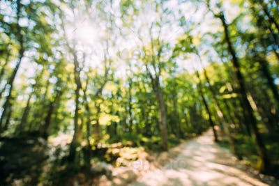 Blurred Abstract Bokeh Boke Natural Background Of Walkway Path L