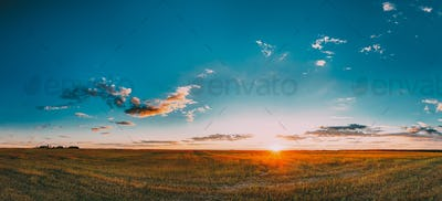 Sunset, Sunrise Rural Meadow Field In August Month. Countryside