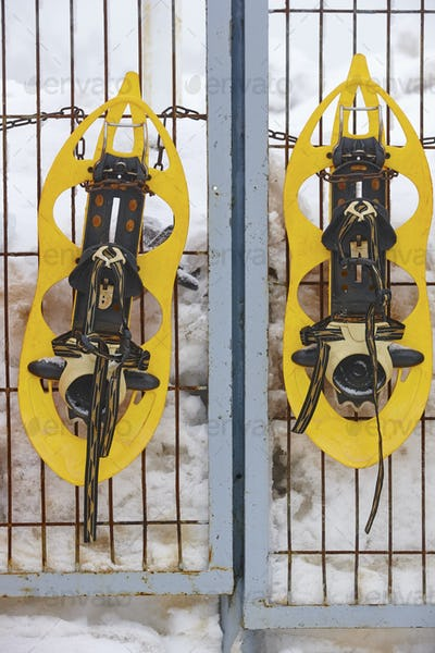 Snowshoes ready to be rent with snowy background. Vertical
