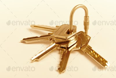 Key ring with keys on golden tone. Rent, buy. Home