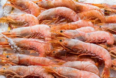 Frozen shrimps for sale
