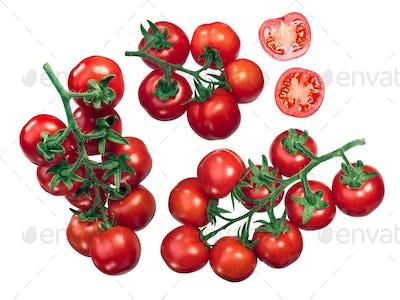Regina tomatoes on the vine