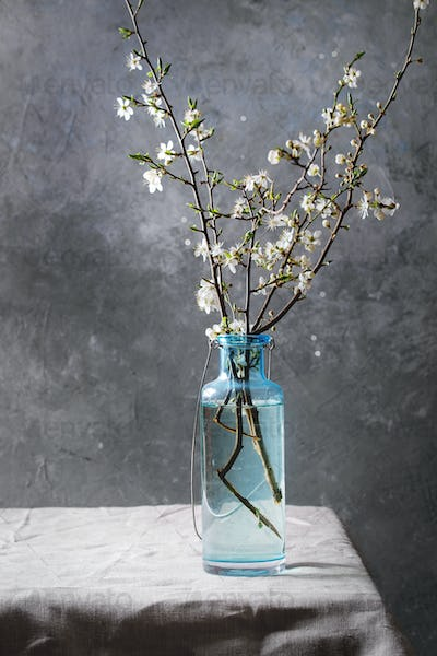 Spring blooming branches