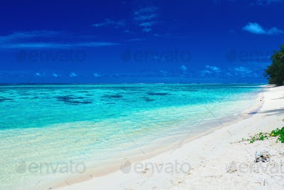 Sandy beach with rocks and palms on Cook Islands, Rarotonga