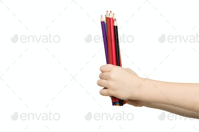 Children's hand holding colorful pencils, isolated