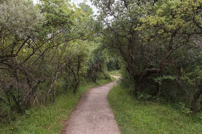 Hiking trail to the Cascades near Mahai