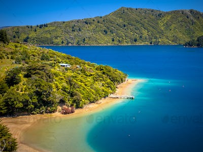 Green forest and turquoise blue water in Marlborough sounds