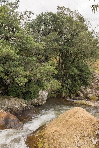 Sterkspruit (strong stream) above the Sterkspruit waterfall near Monks Cowl