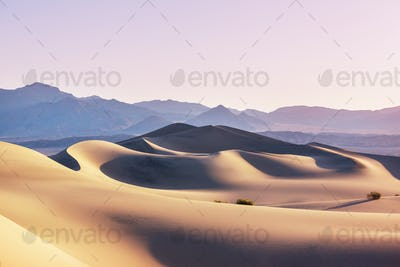 Sand dunes in California
