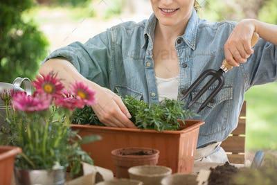 Close-up of female gardener